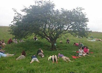 Fairy Tree at the Hill of Tara